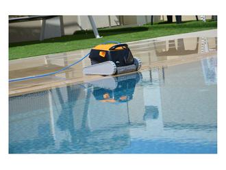 Dolphin E30 Poolroboter mit PVC Bürste Modell 2019