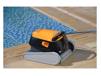 Dolphin E35 Poolroboter mit PVC Bürste Modell 2019